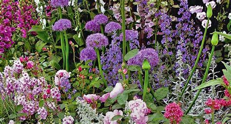 Country Cottage Flowers by Escape To The Country Garden World