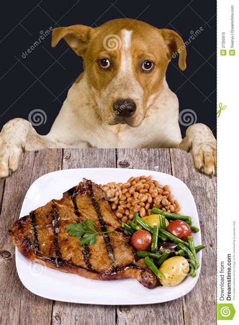 dogs diner steak