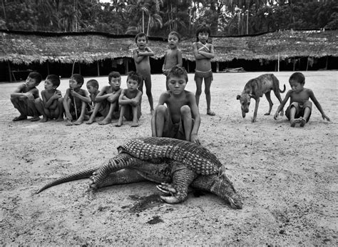 726 besten tribes cult americans bilder the yanomami an isolated yet imperiled tribe
