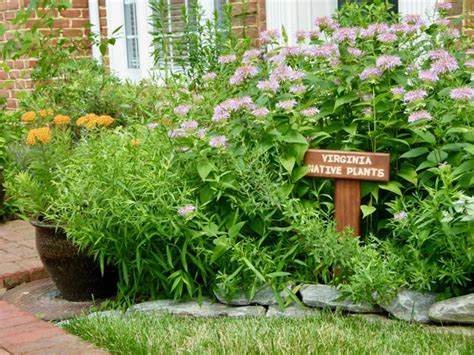 regional garden guides regional plant guides for virginia virginia plant