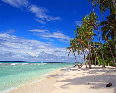Hon Guest Chairs Beach Paradise Strand Tropical Beach Natural Amp Landscape