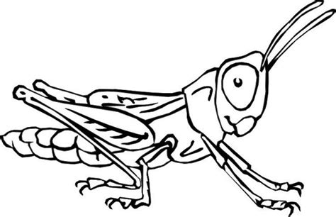Galerry cartoon bug coloring pages