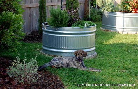 Planters Pointe Hoa by Centerpointe Communicator How To Protect Stock Tank