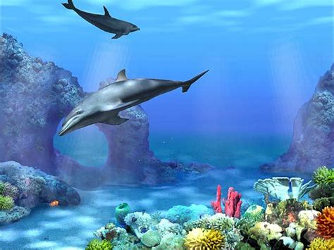 wallpaper 3d ocean free 3d animated wallpaper swim to the ocean depths with