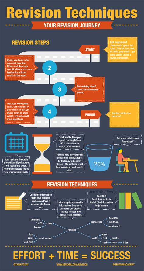 infographic revision tips search infographics