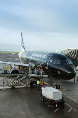 cargo air  zealand careers