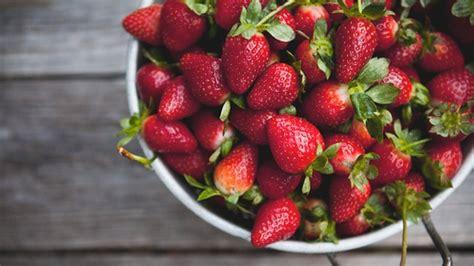 Wann Sollte Ich Erdbeeren Pflanzen Die Wichtigsten Tipps
