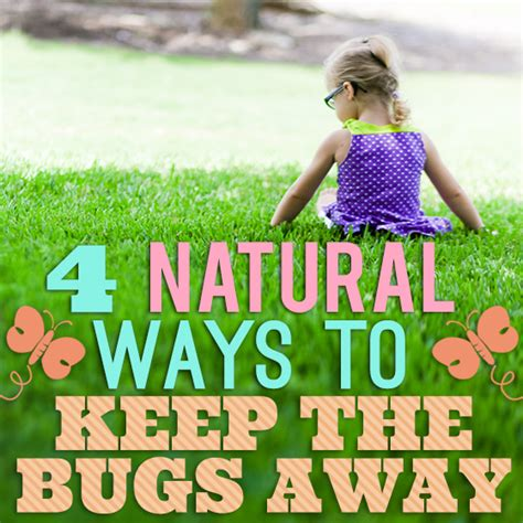 best way to keep bugs away from patio ways to keep bugs away from your garden