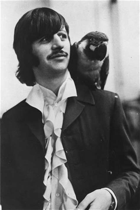 ringo starr the point ringo with a cat beatles