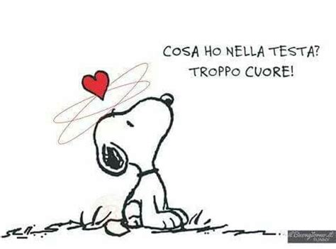 cuore e testa 1000 images about snoopy philosophy on snoopy