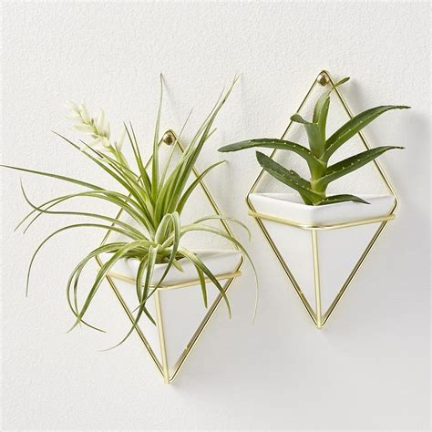 Modern Wall Vase by 25 Best Ideas About Wall Vases On Hanging