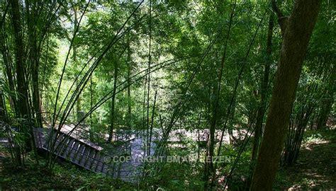 wandlen hell thailand rondreis rondreis river kwai chiang mai