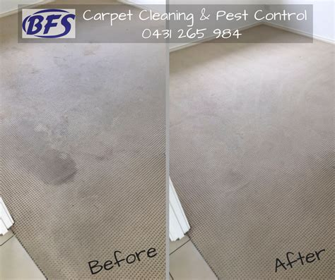 Cost Of Upholstery Cleaning by Coit Carpet Cleaning Cost