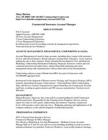 sle insurance underwriter resume