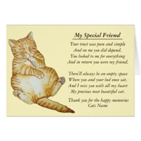 pet sympathy poem gifts t shirts posters other