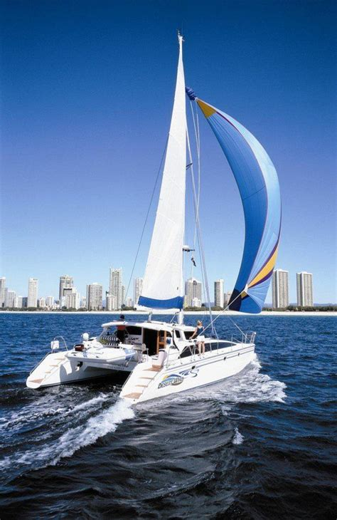 hilton head power boat rentals 25 trending catamaran ideas on pinterest catamaran
