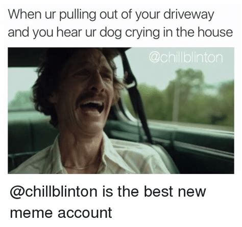 Crying Dog Meme - when ur pulling out of your driveway and you hear ur dog