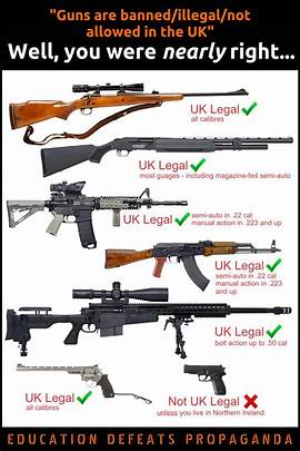 firearms you can own in the uk