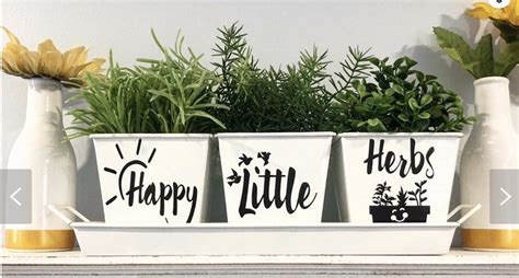 @ 10 Important Tips To Create Your Own Indoor Herb Garden.