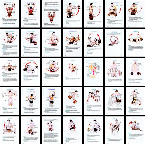 12 Week Bodybuilding / Strength Training Workout Program.