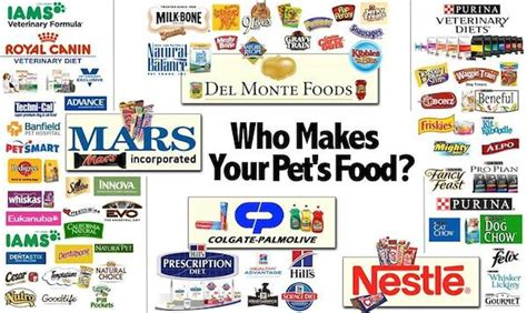 5 Dirty Secrets Of The Pet Food Industry – V-Dog.
