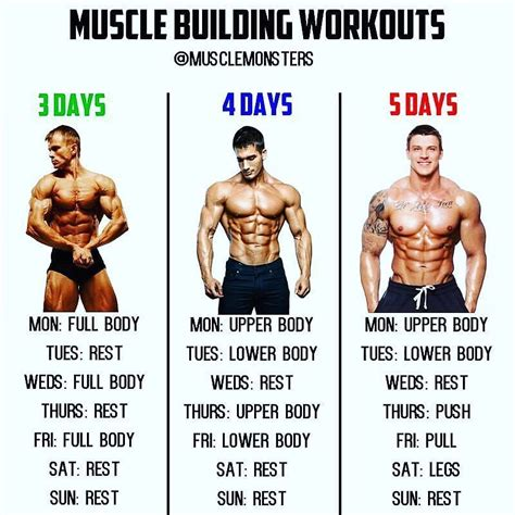 [pdf] 5 Day Workout Routine - Building Muscle 101.