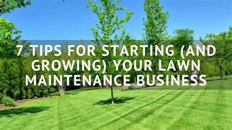 @ 7 Tips For Starting And Growing Your Lawn Maintenance .