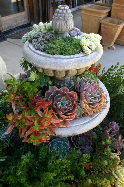 70 Indoor And Outdoor Succulent Garden Ideas - Shelterness.