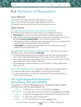 [pdf] 8 3 The Process Of Photosynthesis Answer Key.