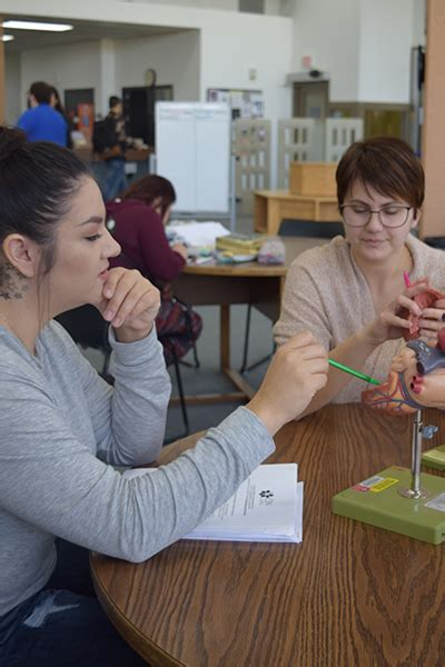 [pdf] A Guide To Ebook Licenses Purchase Models For Libraries .