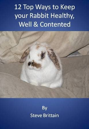 [click]a Review Of 12 Top Ways To Keep Your Rabbit Healthy Well .