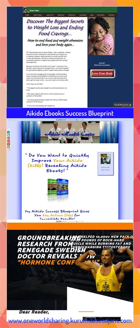 [click]aikido Ebooks Success Blueprint  Billionairemarketingtools.