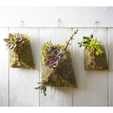 Amazing Deal On Succulent Wall Pockets - Set Of 3.