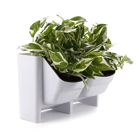 Amazon Com T4u Plastic Self Watering Vertical Living Wall .
