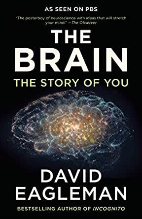 [click]amazon Com The Brain The Story Of You Ebook David .
