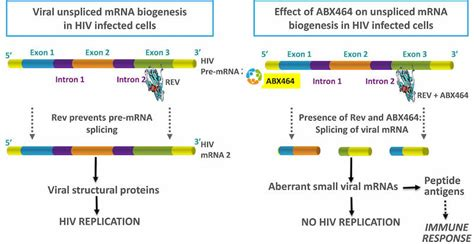 [click]an Hiv Cure By 2020 A Review Of The Future Of Hiv Therapy.