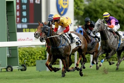 @ Australian Horse Racing Online Betting  Tips .