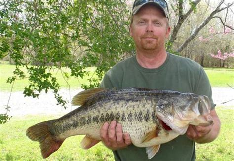 [click]bass Fishing Facts And More.