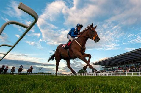 Bets 2 U Review Best Tipsters For Horse Racing And Football.