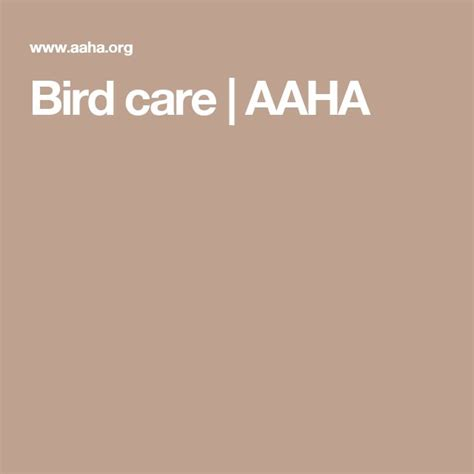 [click]bird Care  Aaha.