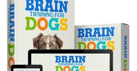 @ Brain Training For Dogs - By Adrienne Farricelli Brain .