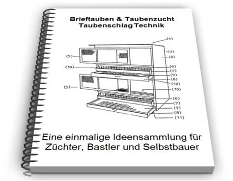 @ Brieftauben  Taubenzucht Technik  Reviews Weekly.