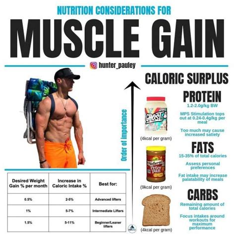Calorie Intake To Gain Muscle Livestrong.com.