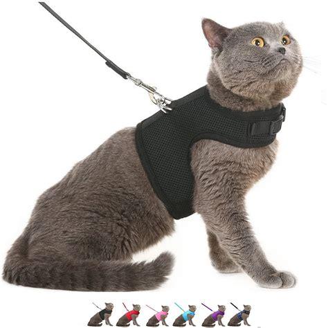 Cat Harness Vest