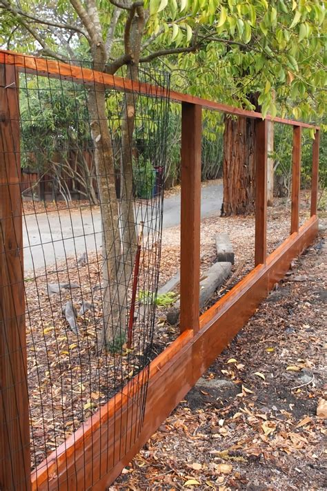 Cheap And Quick Diy Garden Fence To Keep Dogs Out .