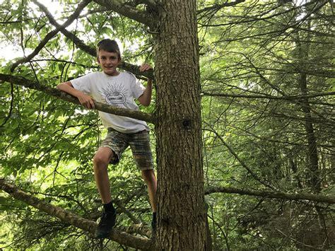 Cabelas Climbing Tree.