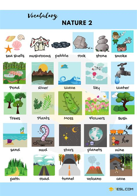Complete English Vocabulary List  Nature.