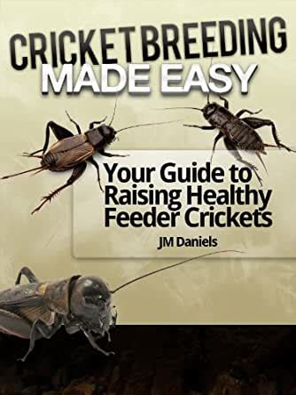 [click]cricket Breeding Made Easy Guide To Breeding Feeder Crickets.