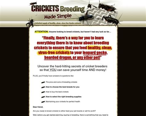 [click]crickets Breeding Made Simple - Easiest Way To Breed .