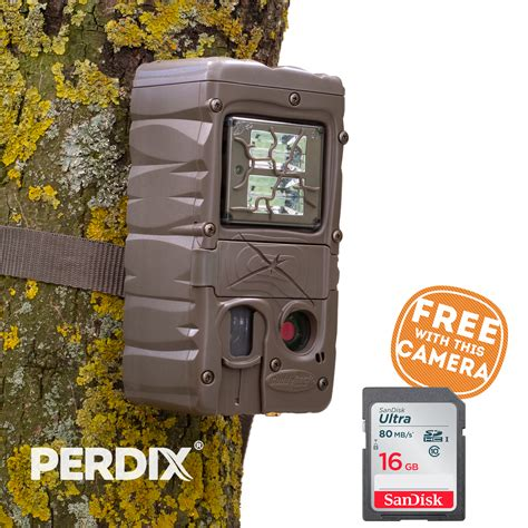 Cuddeback Double Strobe Trail Camera Uk - Perdix Wildlife .